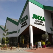 jucca_jasin_centrum_31